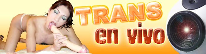 Webcam Trans
